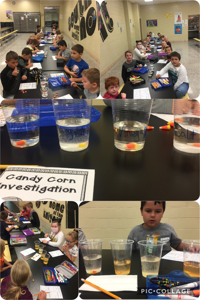 Candy Corn Investigation by SH 2nd Graders.