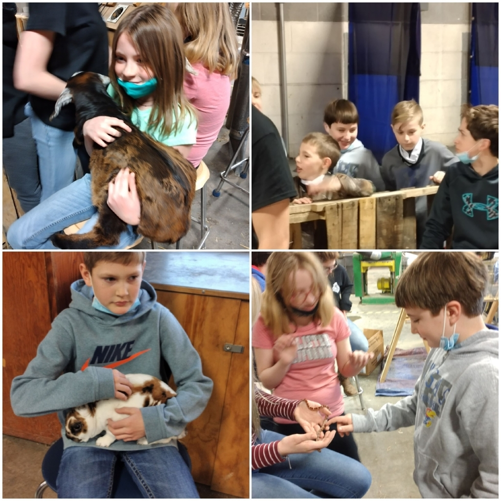 4th grade petting zoo